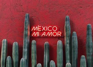 MX.Reisekosten Header