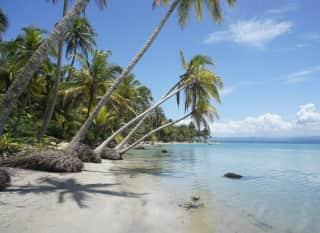 CR.Karibik vs Pazifik Header