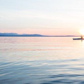 Seekajaktour im Meer von Cortez