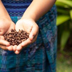 Traditionelle Kaffeekultur kennenlernen