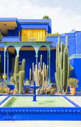 """MA.AR.Marrakesch.Garten Blauer Brunnen und blaues Haus inmitten von Kakteen im """"Majorelle Garden"""" in Marrakesch, Marokko"""