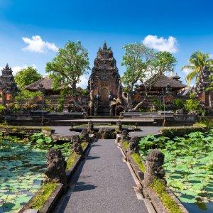 Bali.Ubud.Tempelanlage Lotusteich vor hinduistischem Tempel in Ubud, Bali