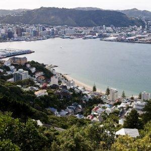 NZ.Wellington_Bucht Der Blick über die bewohnte Bucht von Wellington.