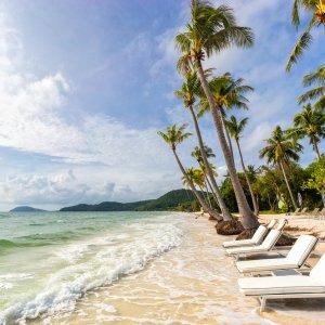 VN.Phu_Quoc_Bai_Sao_Strand Der Blick auf einen mit weißen Liegestühlen gesäumten Strand zwischen Palmen und türkisblauem Wasser.