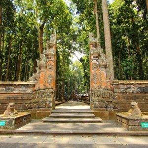 Bali.Monkey_Forest_Ubud Mandala Wisata Wenara Wana Monkey Forest Ubud Affenwald Sacred Monkey Forest Sanctuary