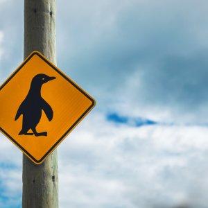 NZ.Oamaru_Pinguin_Kreuzungsschild Der Blick auf ein Verkehrsschild, das einen Pinguin abzeichnet.