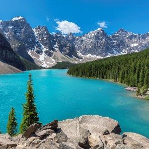 """CA.Jasper_Nationalpark Der türkisfarbene See """"Moraine Lake"""" zwischen Tannenwald und Bergkulisse im Jasper Nationalpark, Kanada"""