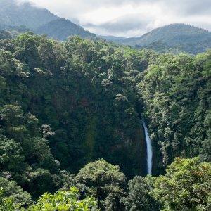 CR.Monteverde_Santa_Elena_San_Luis_Wasserfall Der Blick auf den San Luis Wasserfall inmitten des Waldes.
