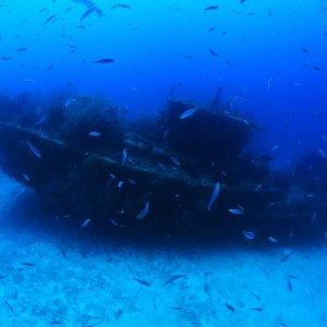"MV.Nord_Ari_Atoll_wrack Das Schiffswrack ""Fesdu"" im Ozean vorm von North Ari Atoll, Malediven"