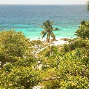 SC.Frégate_Island_Privatinsel Der Blick auf grüne Palmen und Büsche mit türkisblauem Meer im Hintergrund.