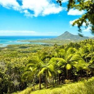 MU.Westkueste Blick von Chamarel auf die wundervolle Küste von Mauritiusdurch eine grüne Palmen-Vegetation hinweg