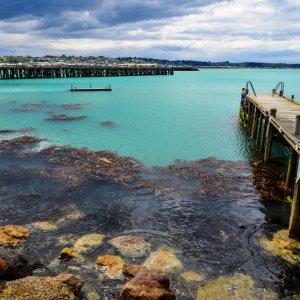 NZ.Oamaru_Hafen Der Blick auf einen Steg am Hafen mit türkisblauem Wasser.
