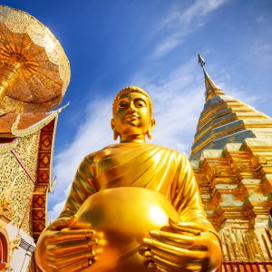 TH.AR.Wat Phra That Doi Suthep Eine Buddha Statue des Wat Phra That Doi Suthep Temepls