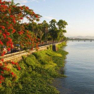 VN.Hue_Huong Giang_Fluss_der_Wohlgerüche Der Blick auf den Fluss der Wohlgerüche mit grüner Uferpromenade und roten Blumen.