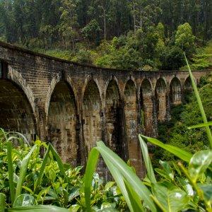 """LK.Ella.Nine_Arches Detailaufnahme der neun Steinbögen der """"Nine Arches Bridge"""" in Ella, Sri Lanka"""