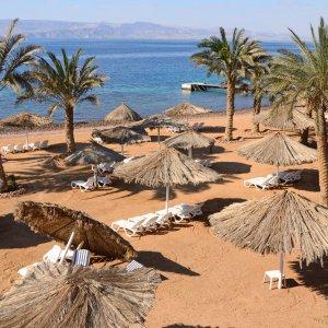 JO.Aqaba.Strand Roter Sandstrand mit Palmen und kleinen Strohschirmen