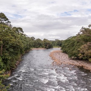CR.Sarapiqui_Tal Costa Rica Sarapiqui Tal Fluss
