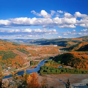 CA.Dawson City