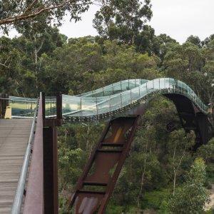 AU.Perth_Kings_Park_Brücke Der Blick auf die atemberaubende Brücke über den Kings Park.