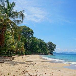 CR.Puerto_Viejo_de_Talamanca Der Blick auf einen Karibikstrand mit üppiger Vegetation in Puerto Viejo de Talamanca.