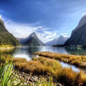 NZ_milfordsoundlandscape