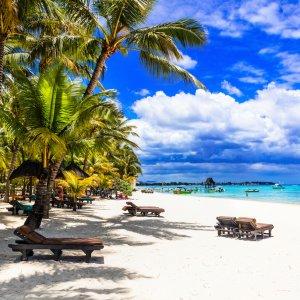 MU.Saint Felix Tropische Szenerie mit weißem Sandstrand und idylischen Palmen