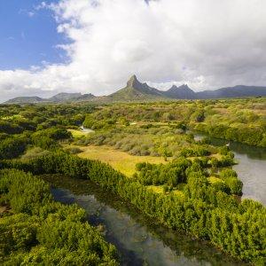 """MU.Westkueste.Nationalpark Luftaufnahme des weitläufigen kräftig grün bewachsenen """"Black River Gorge National Park"""" in Mauritius"""