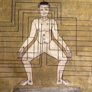Medizinische Wandmalereien im Wat Pho Tempel in Bangkok