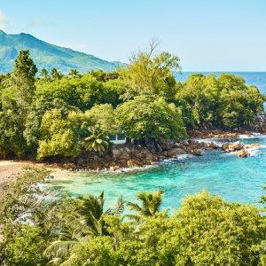 SC.Silhouette.Natur Grüne Vegetation am kristallklaren indischen Ozean, Seychellen