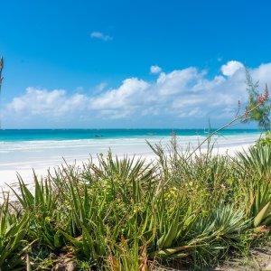 KE.Diani Beach.Meer und Strand