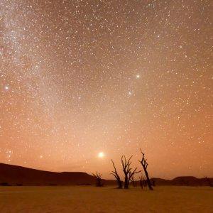 NA.Deadvlei_Filmkulisse Mit Sternen übersähter Himmel während der Dämmerung am Deadvlei