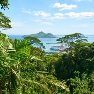 SC.Victoria.Viewpoint Blick auf die Küste der Seychellen durch den Dschungel