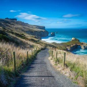 NZ.Dunedin_Tunnel_Beach Der Blick über einen Kieselweg hin zur grünen Felsküste.