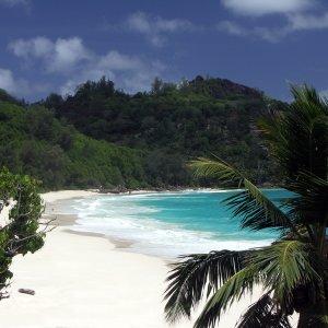 SC.North_Island_Strand Weißer Sandstrand mit türkisblauem Wasser, Seychellen