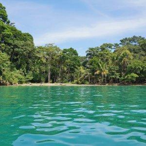 CR.Puerto_Viejo_de_Talamanca Der Blick vom Meer auf einen Karibikstrand mit üppiger Vegetation in Puerto Viejo de Talamanca.