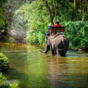 TH.AR.Elephantrekking Zwei Personen auf einem Elefanten im Fluss