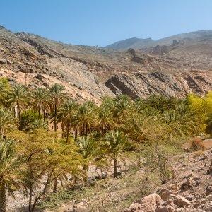 """OM.Al_Hamra_Oase Oase in den Bergtälern des Berges """"Jebel Shams"""" im Oman"""