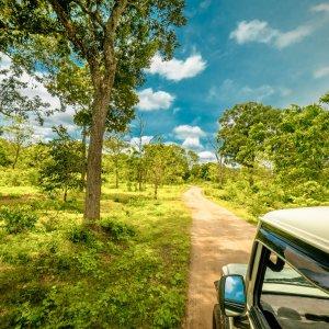 LK.Yala National Park Jeep