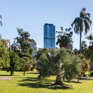 AU.Brisbane_Park Der Blick über einen Park mit der Skyline von Brisbane im Hintergrund.
