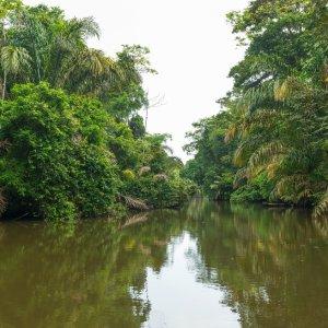 CR.Nationalpark_Tortuguero_Fluss Costa Rica Tortuguero Nationalpark Regenwald Fluss Boot