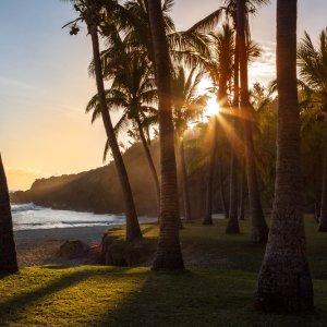 RE.POI.Réunion Nationalpark Strand Blick durch die Palmen bei Sonnenuntergang
