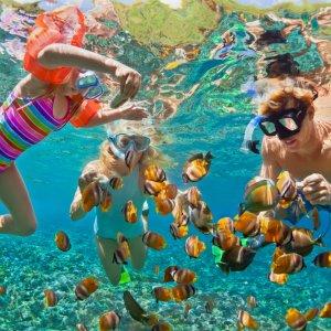 TH.AR.Phuket Schnorcheln Eine Familie beim Schnorcheln im Meer