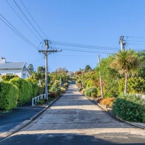 NZ.Dunedin_Baldwin_Street Der Blick von unten auf die steilste Straße der Welt.