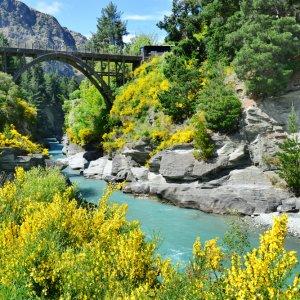 NZ.Queenstown_Shotover_River_Arrowtown Der Blick auf den türkisblauen Shotover River mit Brücke.