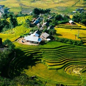 VN.Sa_Pa_Reisfelder Der Blick auf die grünen Reisterrassen.