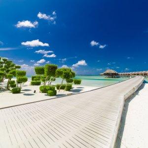 MV.Sued_Ari_Resort Holzsteg am weißen Sandstrand am Süd-Ari-Atoll auf den Malediven