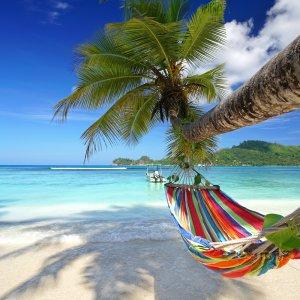 SC.North_Island Bunte Hängematte hängt an Palme am paradiesischen Strand der Seychellen