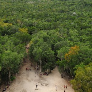 MX.Cobá Nohoch_Mul-Pyramide Der Blick in die grüne Ferne von der Nohoch Mul-Pyramide aus