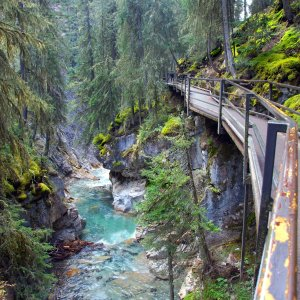 CA.Banff_Nationalpark_Johnston_Canyon Wanderpfad am steinigen Bachverlauf am Johnston Canyon, Banff Nationalpark