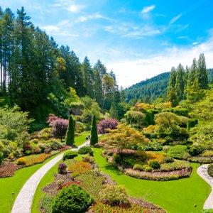 CA.Victoria.Garten künstlich angelegter Garten mit saftig grünem Gras und üppig bepflanzten Beeten, Victoria